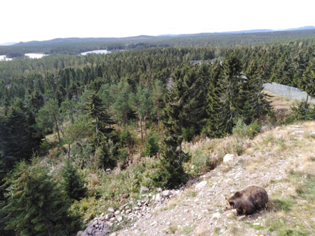 In the middle of Sweden – Dalarna County